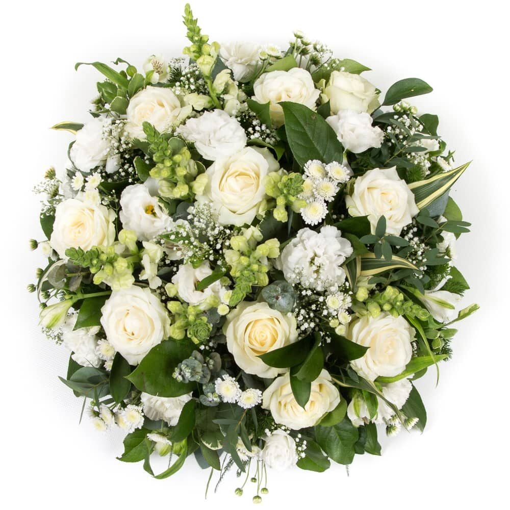 Classical White Posy flowers